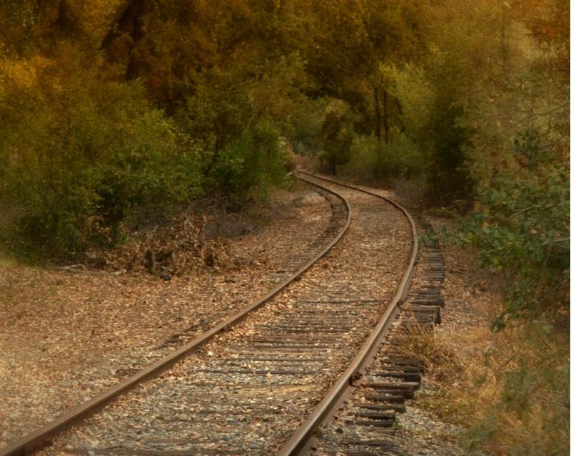 Fall Wanderings