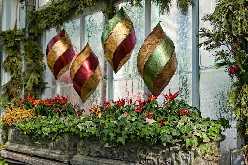 Conservatory Still-LIfe