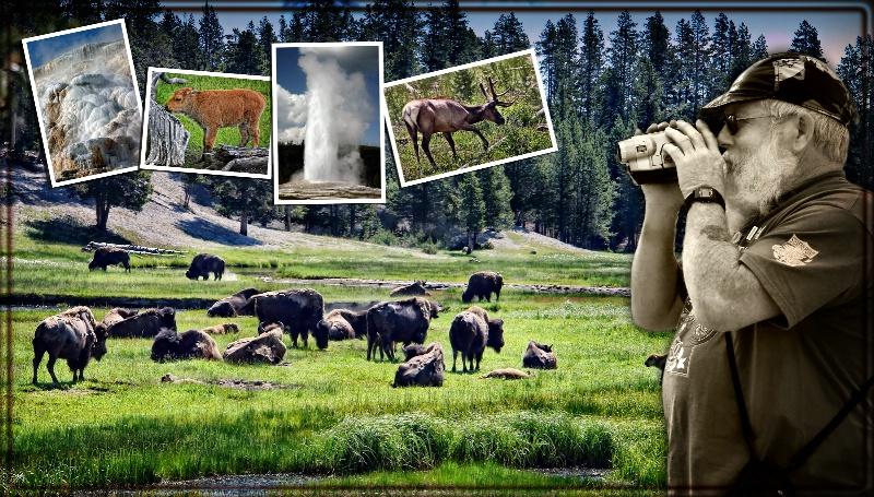 Yellowstone - A Photographer's Paradise