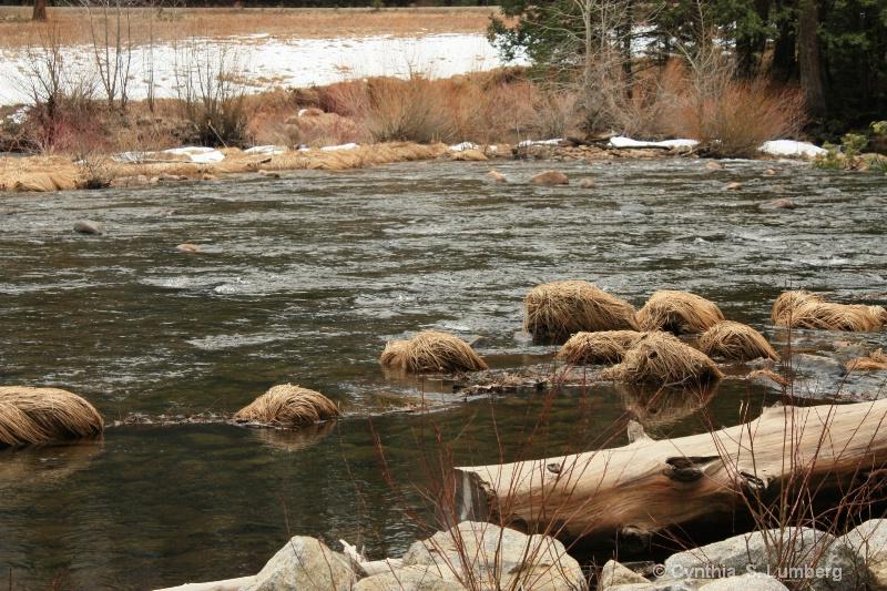 On the river banks. . .Yosemite, CA