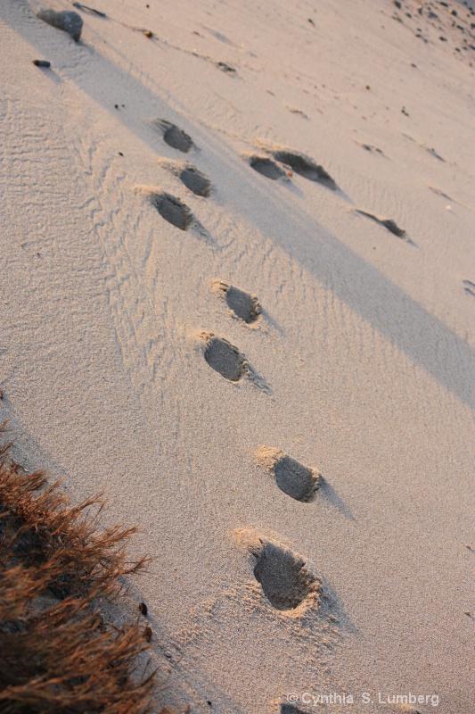 Imprints. . .