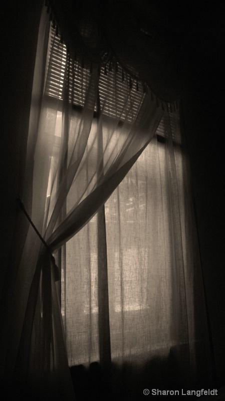 G's Window