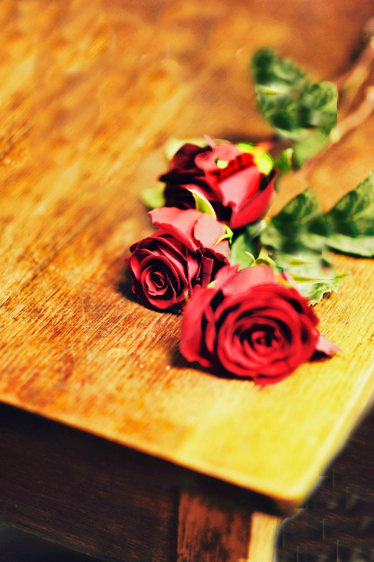 Bridesmaids' Roses