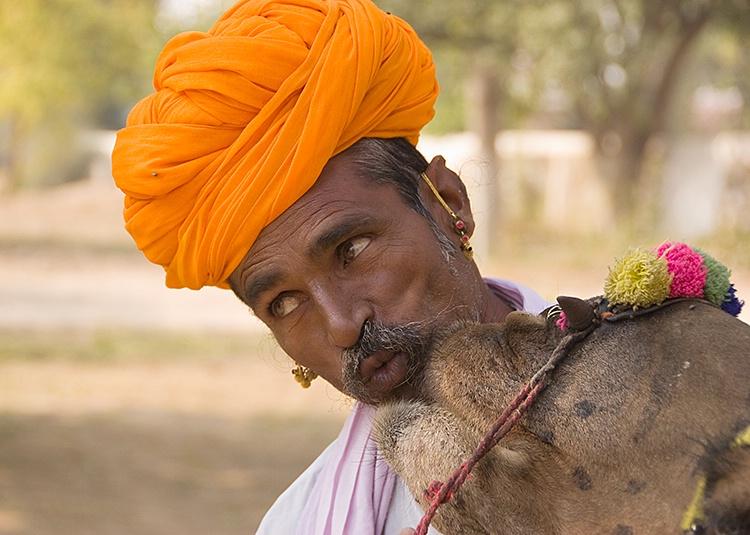 Camel Carer