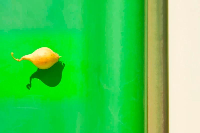 Onion Soliloquy