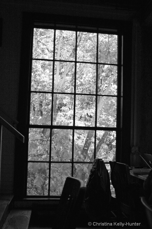 room with a view 4 bw