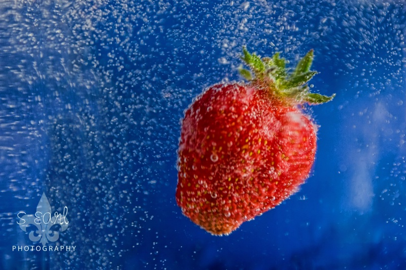 Strawberry Season Has Come to Skopje