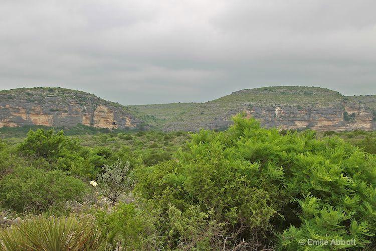 Landscape from Dolon Creek Road