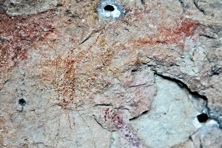 Pictograph image on wall of 41VV889
