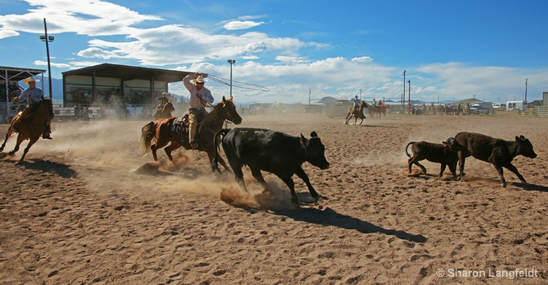 Ranch Rodeo Competition team