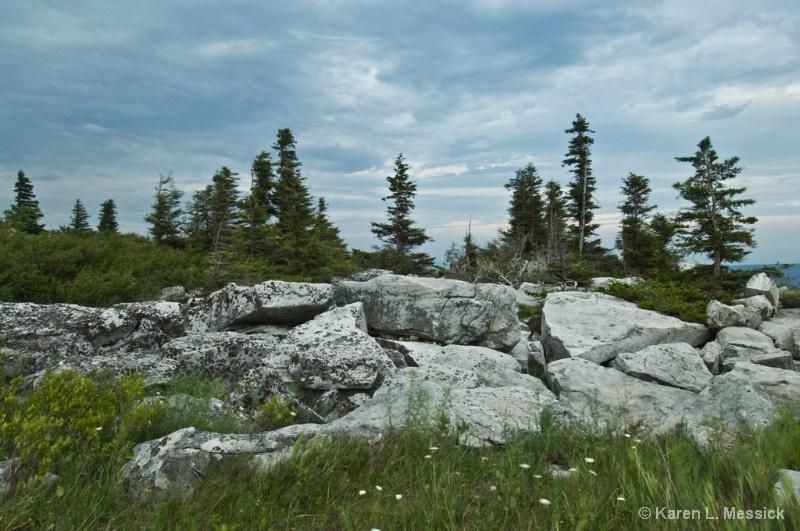Bear Rocks Storm