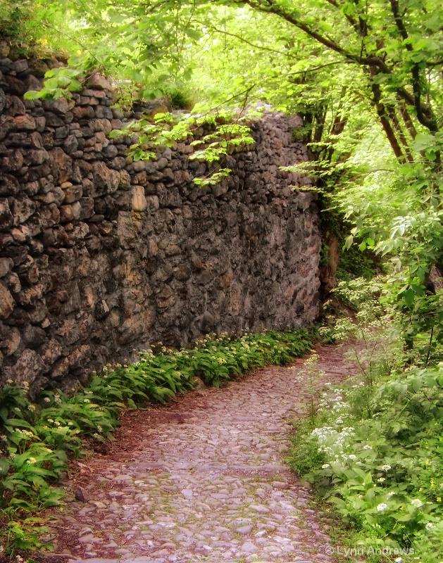 Trail to Castillo de Vezio, Italy