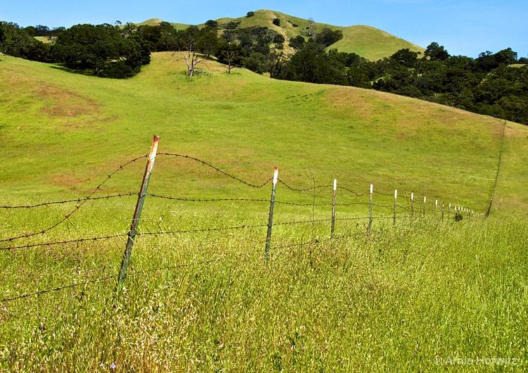 Fenceline with Hills - II