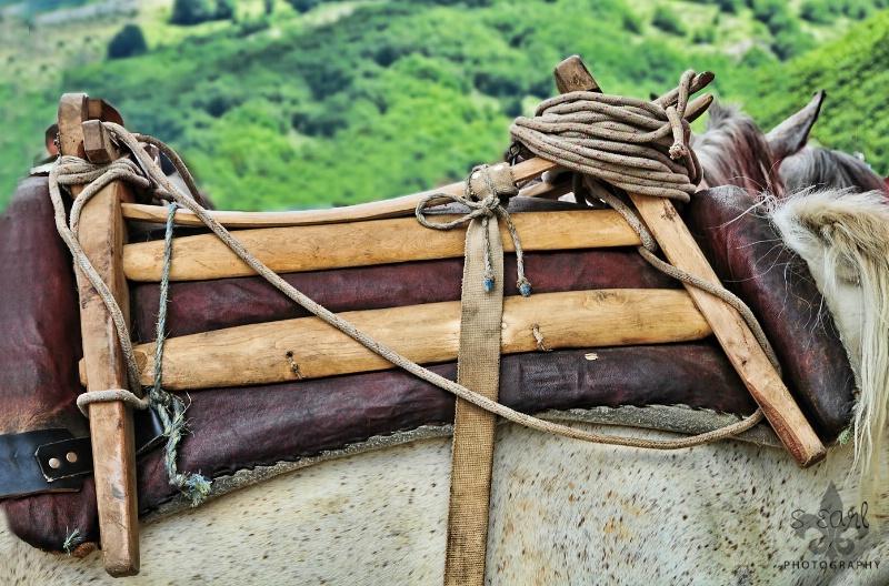 Detail of Saddle@@Galichnik, Macedonia