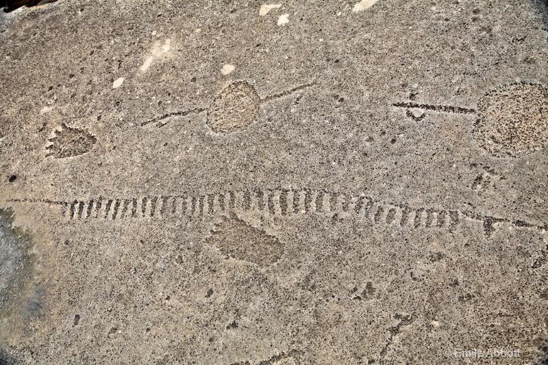 Bear Paws, lines, weighted atlatls