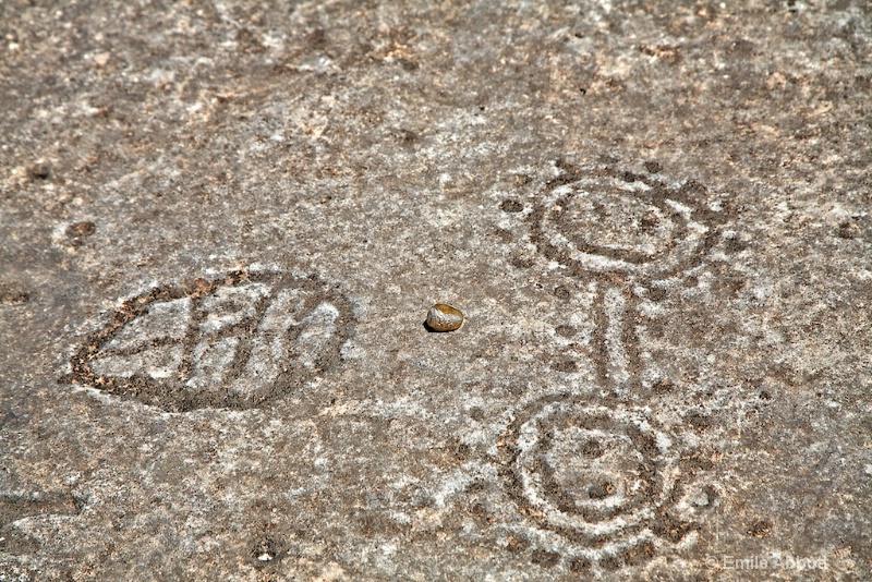 Discrete Geometric Petroglyphs