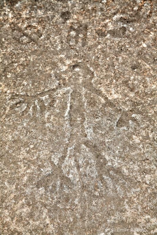 Red Monochrome Style Petroglyph