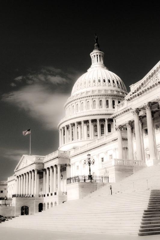 U.S. Capital Artwork