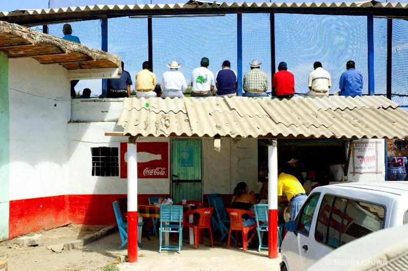 Watching Mexican Baseball, Sayulita, Mexico