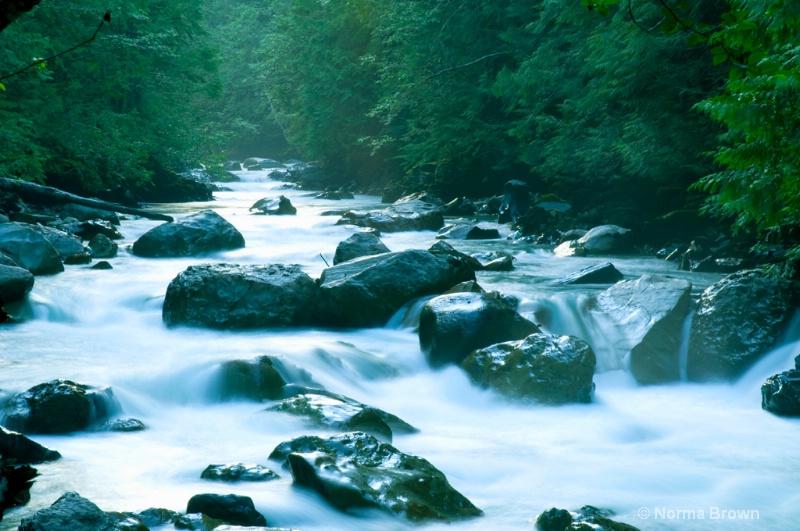 Rapids on the Nooksack River, WA