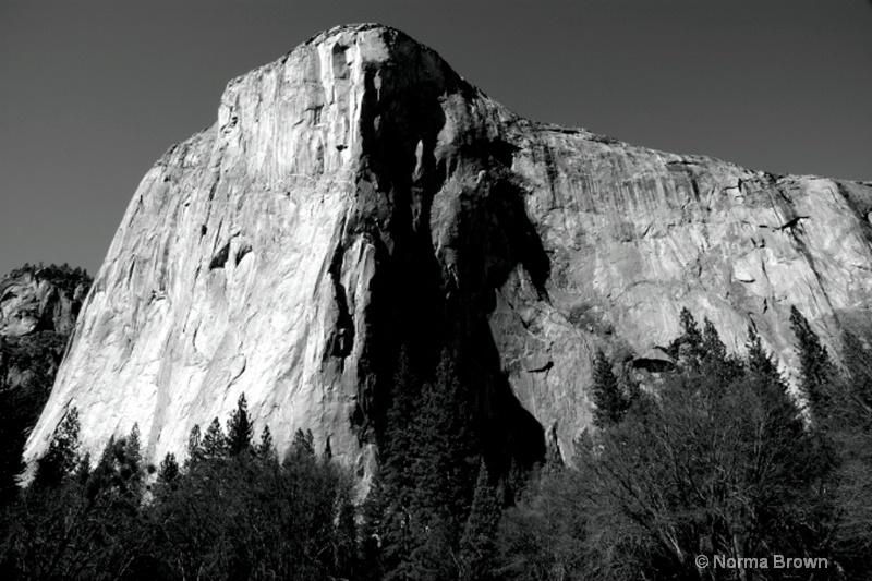 El Capitain /  Yosemite NP, CA