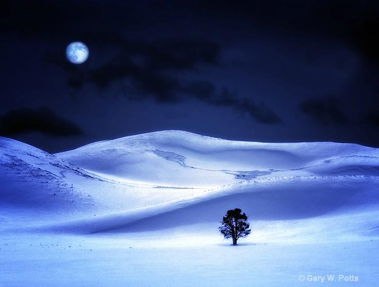 Yellowstone Midnight