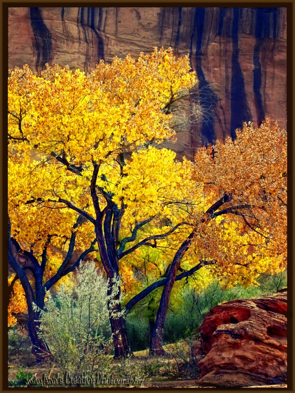 Fall in Canyon deChelly