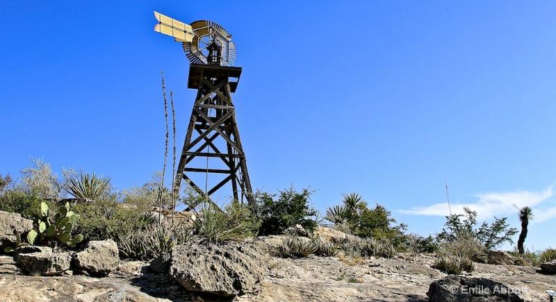 Desert Landscape  Langtry, Texas
