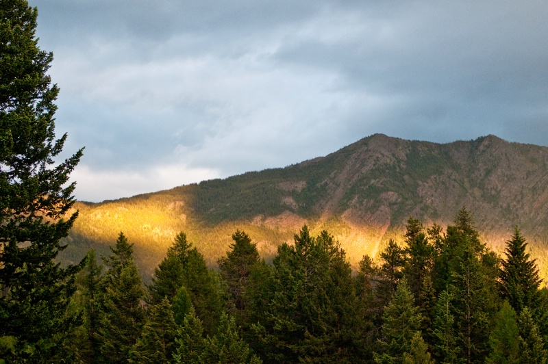 Light in the Mountains