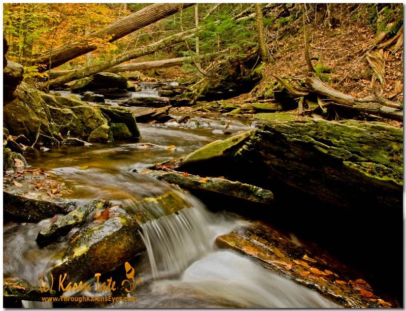 Ricketts Glen State Park, Pa.