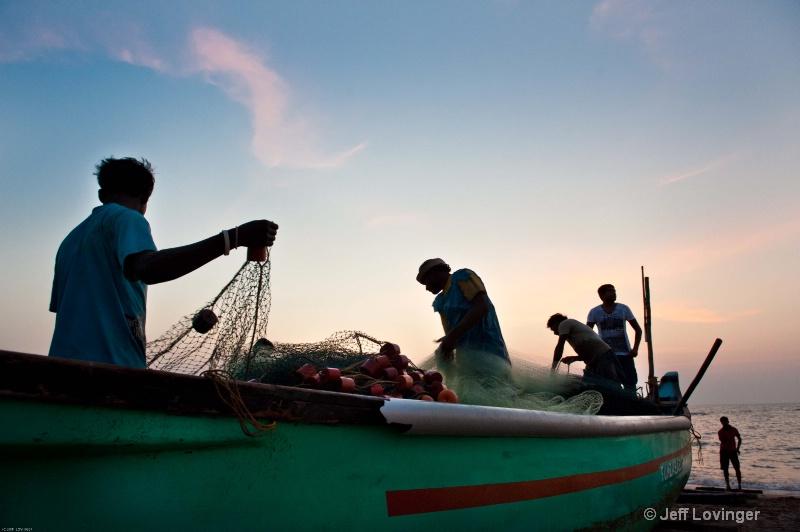 Bringing in the catch. Goa, India