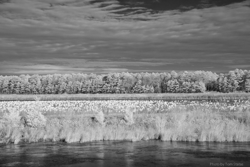 Blackwater 2011-02-12-54