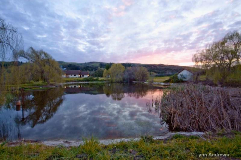 new Foley pond