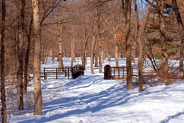The Bridge at Herrick Lake