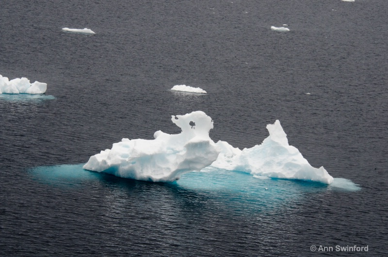 Penguin Berg