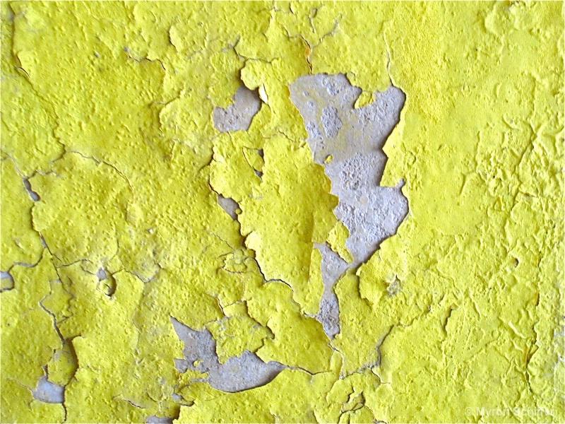 Peeling Paint 237