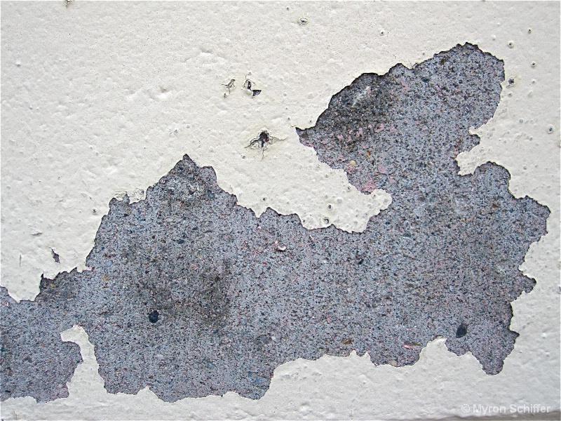 Peeling Paint 238
