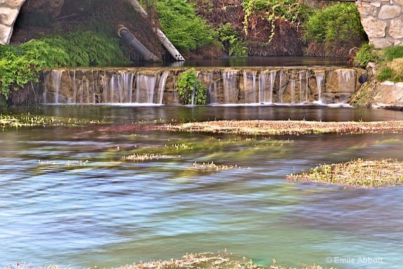 Carolina Springs