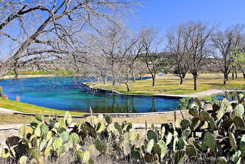 Lake from Carolina Springs