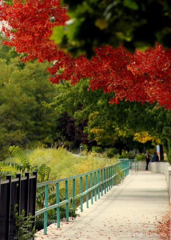 Pleasant Walk