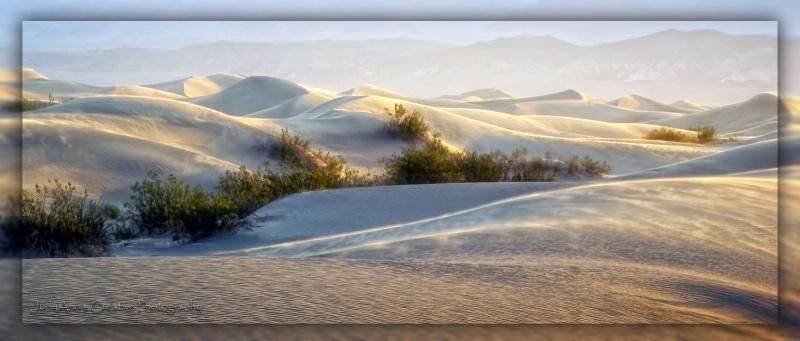 Delicate Dunes