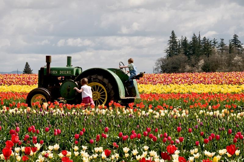 Future Tulip Farmers of America