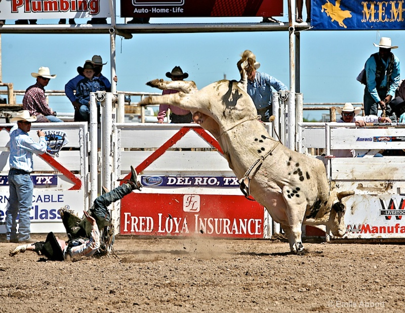 Lines in a bull ride