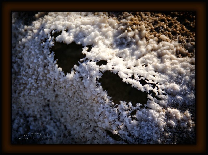 Delicate Lacey Salt Crystals