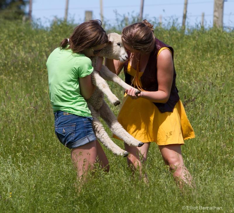 Mary Had a Little Lamb 1