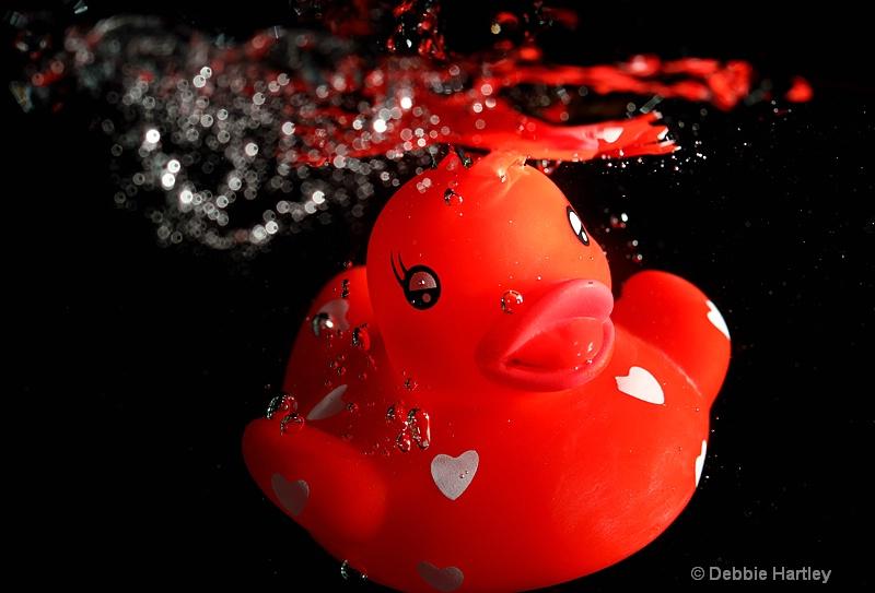 duck underwater