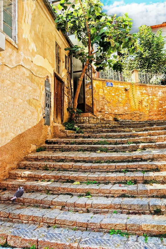 Ohrid Stairway@After