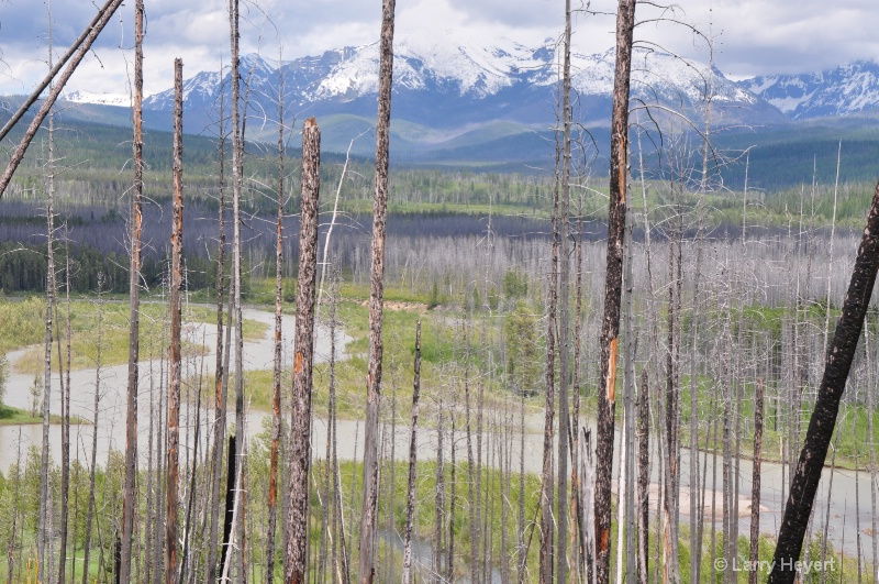 Glacier National Park- Montana