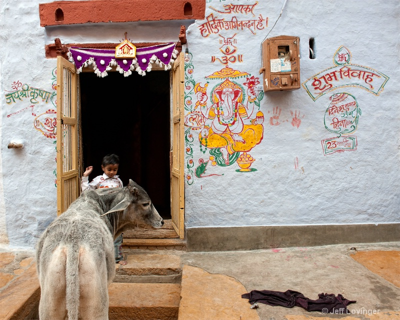 Boy and Cow, Rajasthan, India