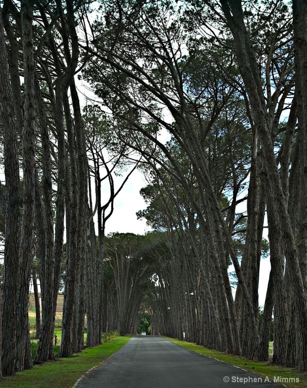 Roads embrace